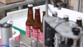 Wild Kombucha Bottling Process
