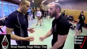 Muay Thai Coaching